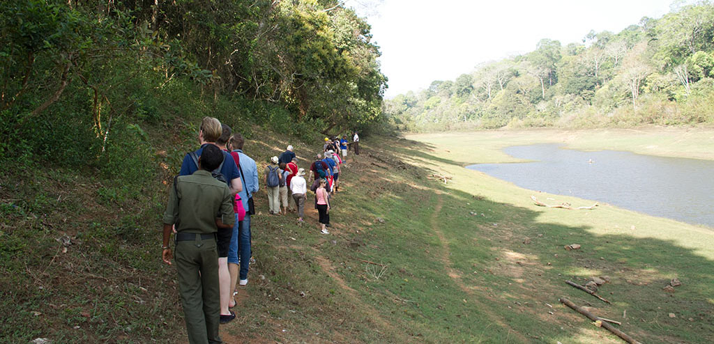 Thekkady-Periyar_Tiger_Reserve